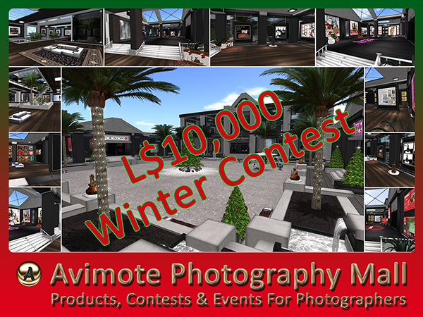 Avimote Photography Mall - Winter Contest